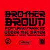 Brother Brown - Under The Water - Carlos Francisco Private Sub Mix