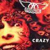 Aerosmith crazy (cover)