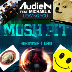 Case & Point X Flosstradamus X Audien - Leaving The Moshpit Pressure (Art Of Boosey Mashup)