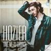 Take me to church - Hozier