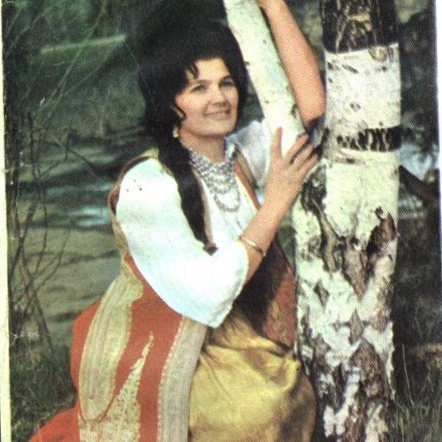 Silvana Armenulić, Ko se ono brijegom šeće