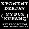 XPONENT DJ (Vyruz Kupang) - DIK (WALI BAND) SOUNDBREAK mp3