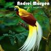 Andrei Maryen_Bird Of Paradise