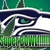 Super Bowl Review WHY did they not run the ball