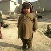 Pashto Rabab Saaz