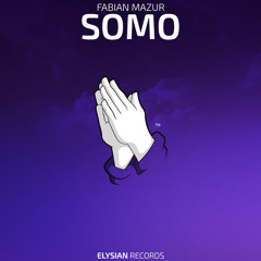Fabian Mazur - SOMO
