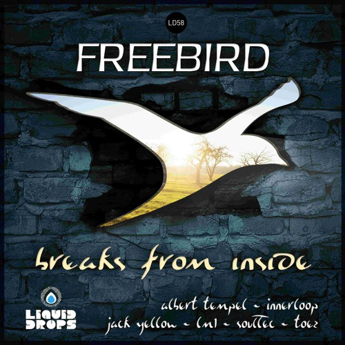 FreeBird - Intro (Trip to La Perda) [LIQUID DROPS LP]