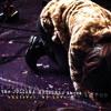 Free Download Wood - The Juliana Hatfield Three Mp3