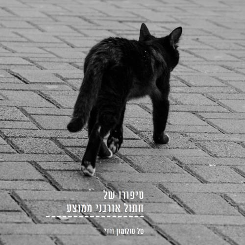 סיפורו של חתול אורבני ממוצע