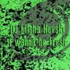 DJ Misha  Nevsky -I Wanna Be Fresh