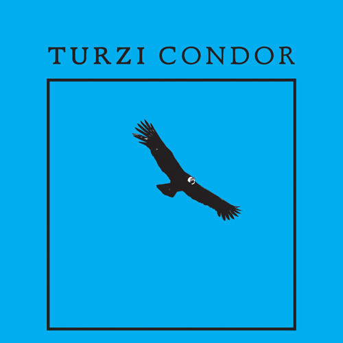 Turzi - Condor (Matias Aguayo Version)
