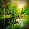 Dream Prisoner Part II - Enchanted Garden (Featuring Chris Kinsey)