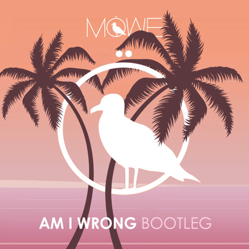 Am I Wrong (Bootleg)