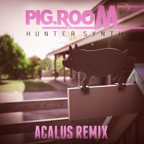 HunterSynth - Pig Room (Acalus 'Remastered' Remix)