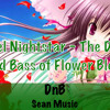 Ravel Nightstar - The Drum And Bass Of Flower Bless [BUY LINK IS FREE DL]