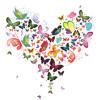 Butterflies 01062015 Vocals And Lyrics By Jonalynn