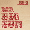 Mr Big Sun (radio mix) - Boca 45 ft Stephanie McKay