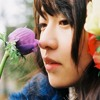 Nogizaka46 - Kokoni Iru Riyuu [Instrumental] -- (Cover) FLAC Lossless