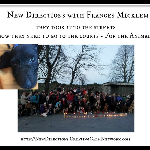 New Directions with Frances Micklem - Taking it to The Courts - For the Animals