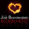 Joel Brandenstein - In Dein Herz (Kleeberg Bootleg)|facebook.com/kleebergmusik mp3
