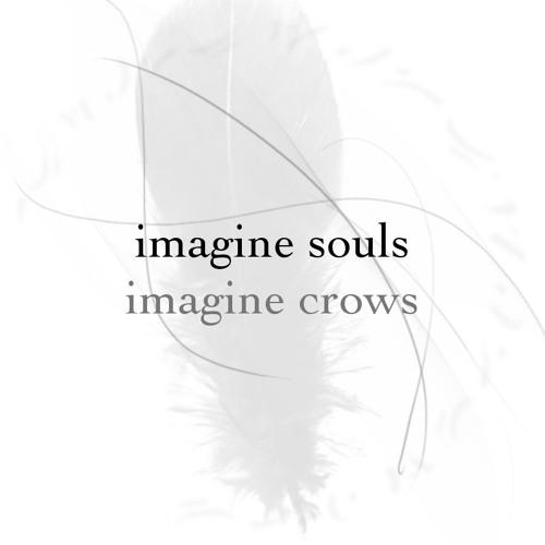 imagine souls / imagine crows