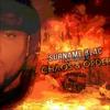 Level 11 -  (Chaos cd Bonus track) mp3