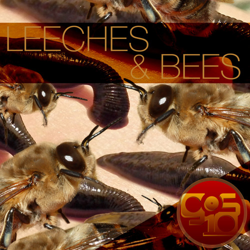 Leeches And Bees