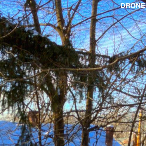 Ben Stepner - Drone
