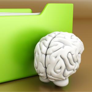 Az intelligencia 7 típusa