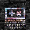 Martin Garrix - Forbidden Voices (Jake Liedo Remix)