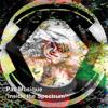 Pas Musique - Inside the Spectrum (ALRN061)