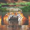 BeatMakerDizzya & Rhino - If You Ask Me