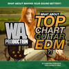 W. A. Production - What About Top Chart Guitar EDM Preview