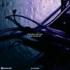 Pedro Silva - The Hoax (Chris-T & Matu Remix)