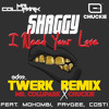 Shaggy - I Need Your Love  (Mr. Collipark & Chuckie Remix) [EDM.com Premiere].jpg