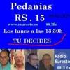 PEDANEOS RS15 20140209