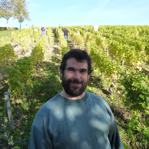 IDTT Wine 180: Sebastien Riffault