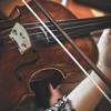 Concerto voor twee violen in d klein BWV 1043 van J.S. Bach