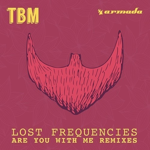 Download Lost Frequencies - Are You With Me (Kungs Remix)