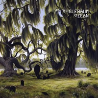 Moglebaum - Ozean