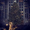 Brenda Lee Rockin Around The Christmas Tree Official Francesca Dowle Cover Mp3