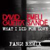 David Guetta Ft Emeli Sandé - What I Did For Love (PANG! Remix)