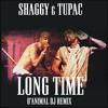 SHAGGY & 2PAC - LONG TIME [O'ANIMAL DJ REMIX]