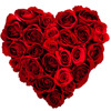 Sweeeeet Valentine ft. Google Translate