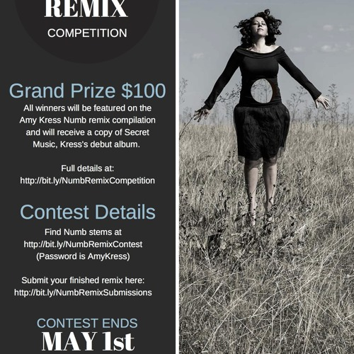 Amy Kress Numb Remix Contest