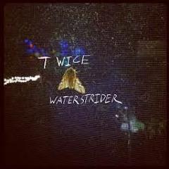 Midnight Moon - Waterstrider