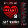 RISEUPSOUND - LOVE IS THE ANSWER #3 (2015)