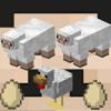 Chicken Egg Sheep