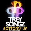 Trey Songz - Bottoms Up (Spleks Remix) [FREE DOWNLOAD CLICK BUY]
