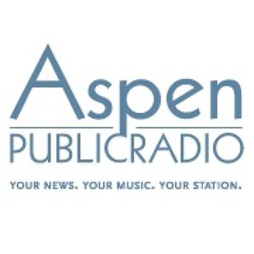 Aspen Ideas Festival 2013 - Principled Pluralism